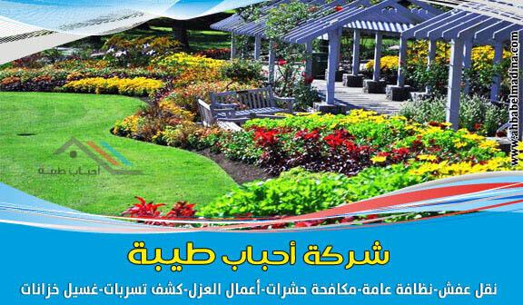 شركة تنسيق حدائق بالمدينة المنورة 0557763091