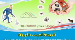 افضل خدمات شركة مكافحة حشرات بجدة ورش مبيدات