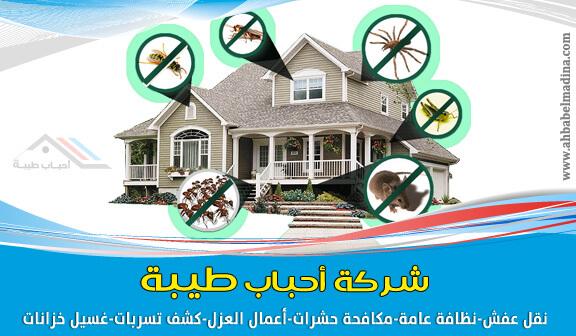"""احباب طيبة للخدمات المنزلية بينبع 0509312584 """"التنظيف مكافحة الحشرات نقل مكافحة-حشر�"""