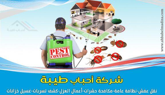 شركات مكافحة الحشرات في المدينة المنورة أفضلهم أحباب طيبة في رش المبيدات