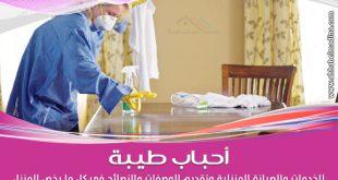 طريقة تنظيف البيت بسهولة بعد العزومات الكبيرة