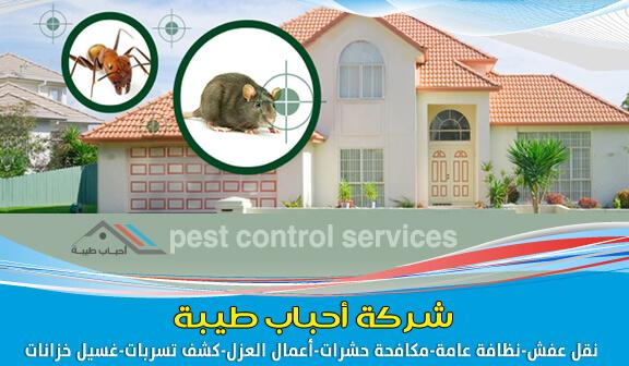 شركة مكافحة الحشرات بالظهران