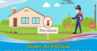 افضل شركة مكافحة حشرات بالجبيل ورش حشرات بالجبيل ورش مبيدات فعالة