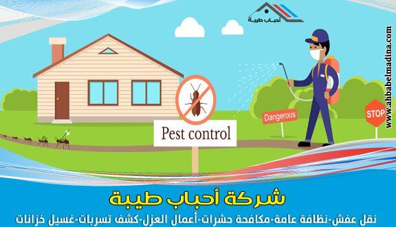 شركة مكافحة حشرات بالدمام 0559328721 ارخص شركة مكافحة حشرات شركة-مكافح�